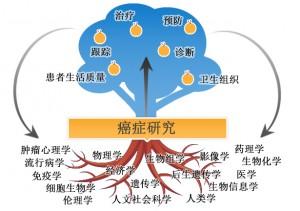 kpole_arbre-cn